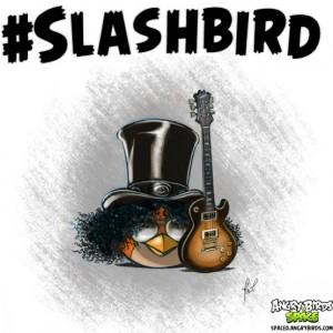 Slashbird.