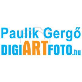 Paulik Gergő esküvői fotós